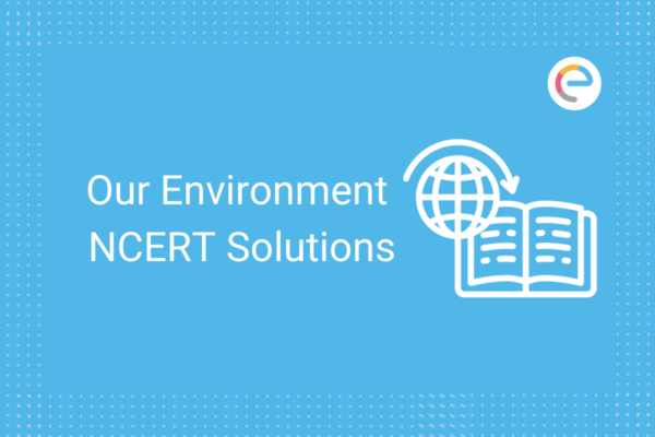 our environment ncert solutions