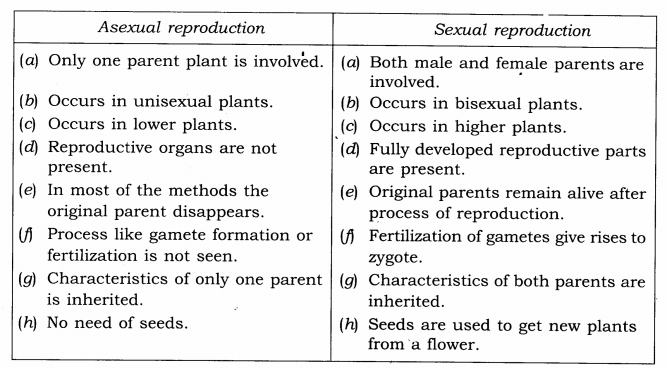ncert solutions for class 7 science chapter 12 exercises