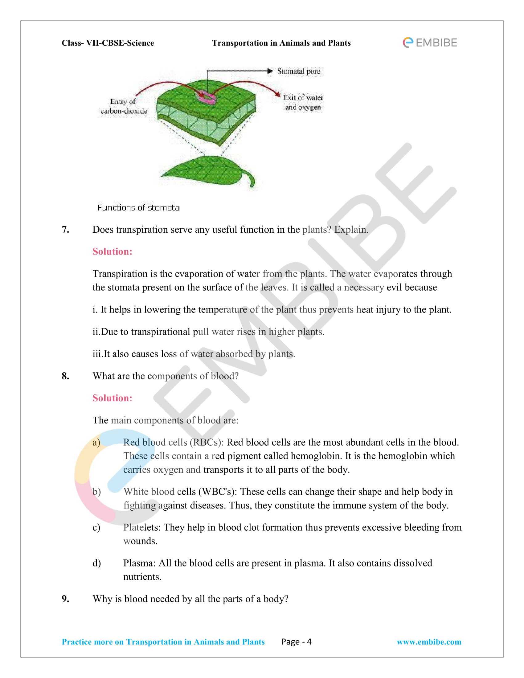 NCERT_G7_BOC_Biology_Transportation in Animals and Plants-4