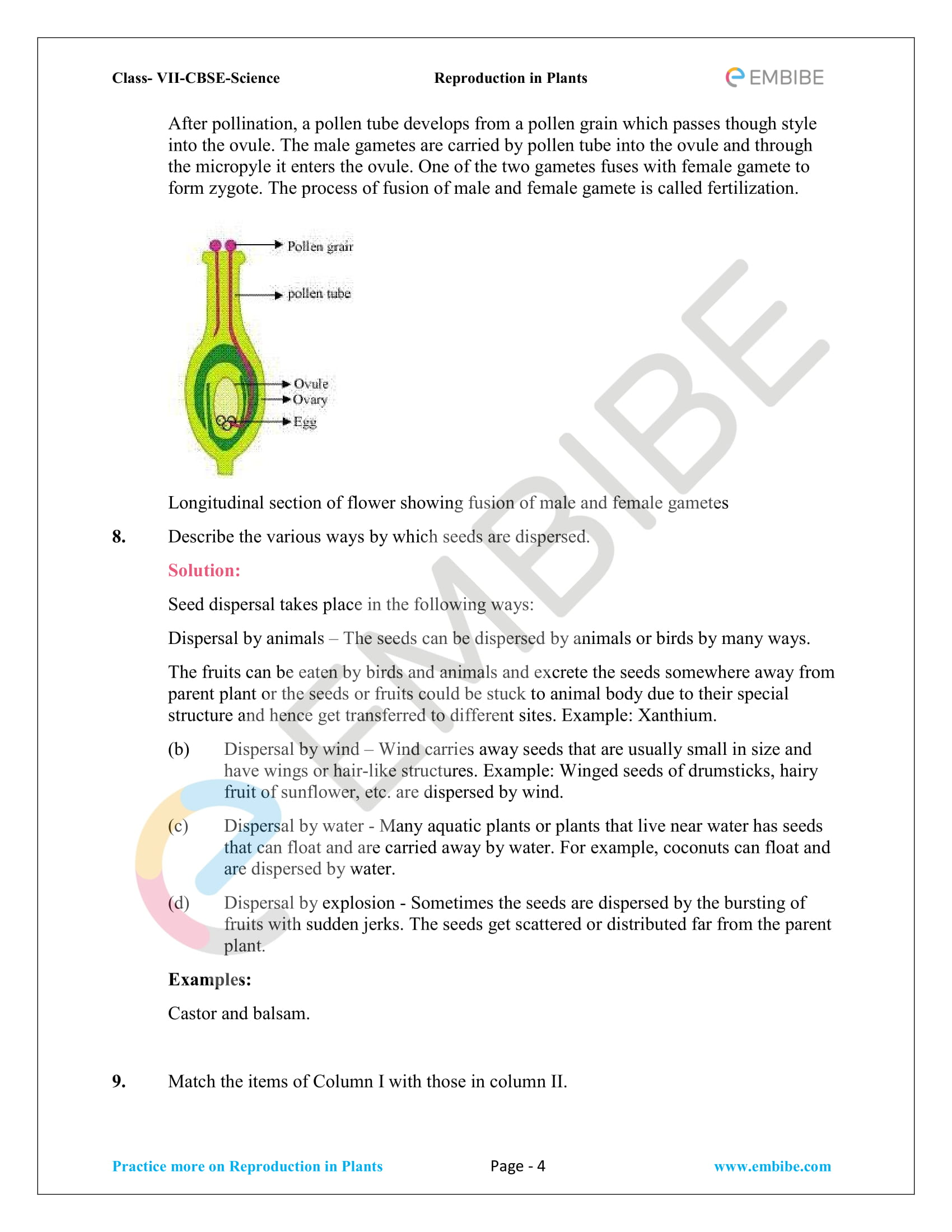 NCERT_G7_BOC_Biology_Reproduction in plants-4
