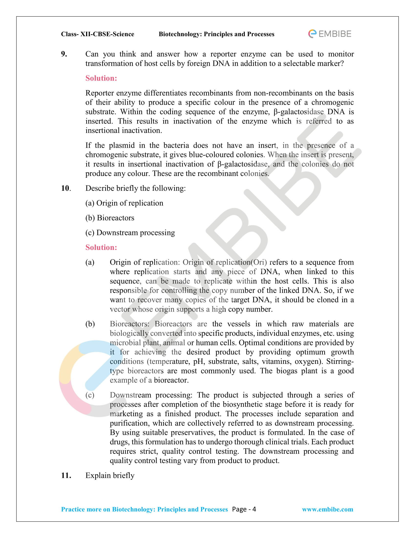 NCERT Solutions For Class 12 Biology Chapter 11