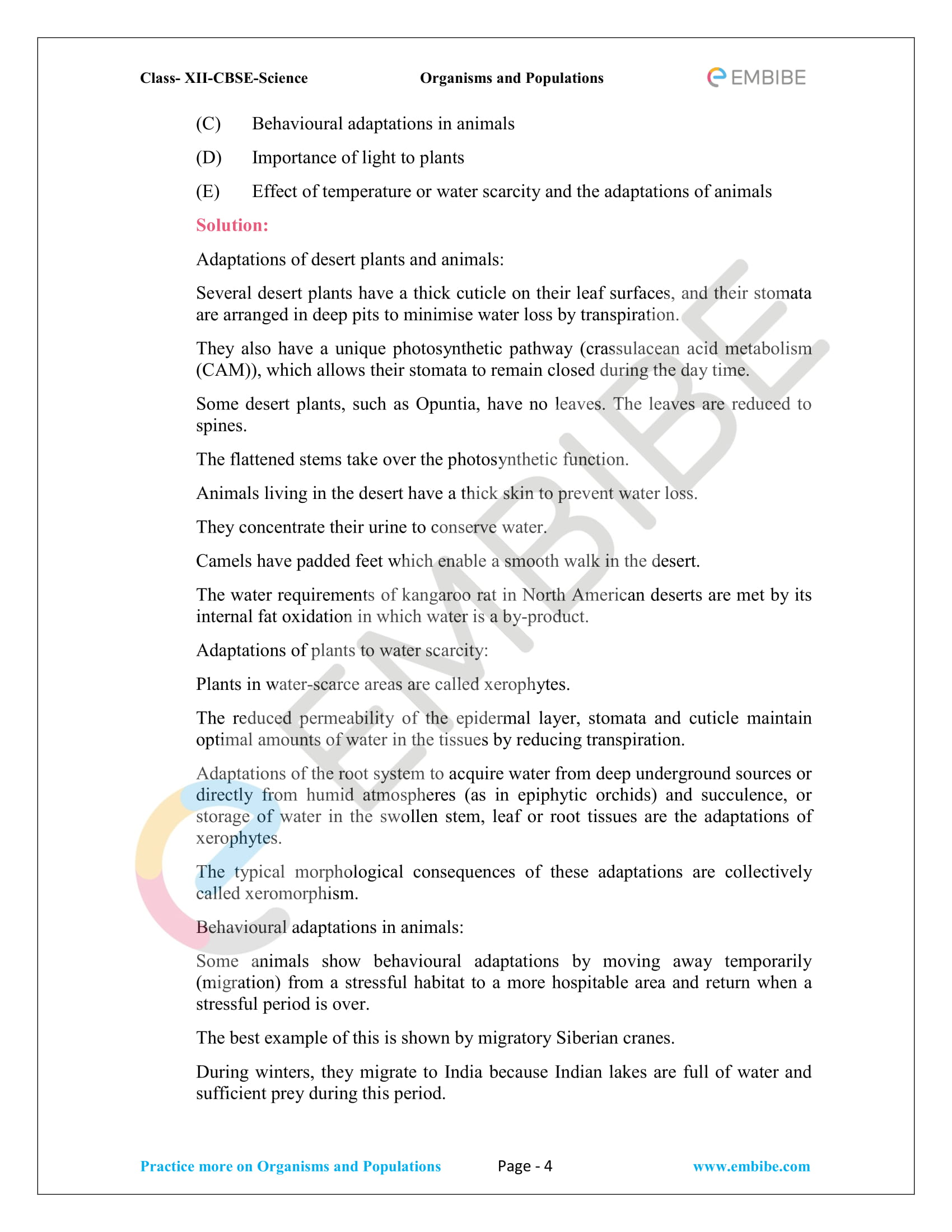 NCERT Solutions for Class 12 Biology Chapter 13 PDF Download