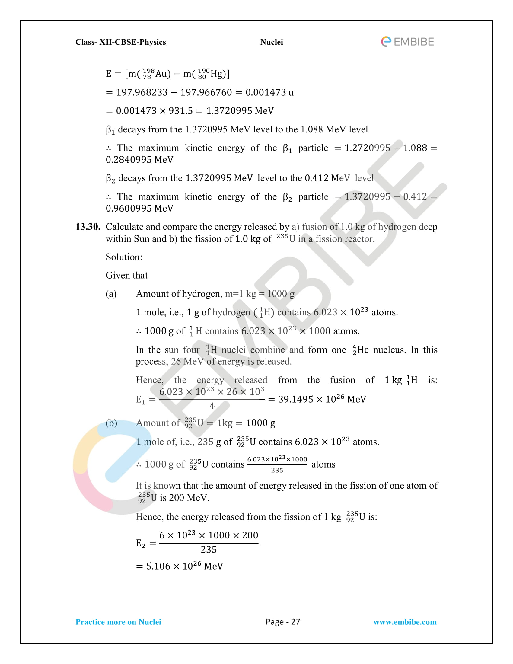 CBSE NCERT Solutions for Class 12 Physics Chapter 13 Nuclei PDF