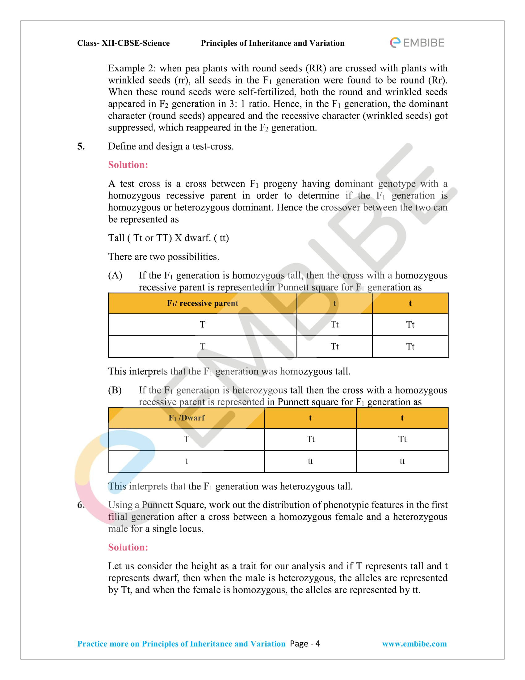 NCERT Solutions for Class 12 Biology Chapter 5: Principles Of Inheritance And Variation - 4