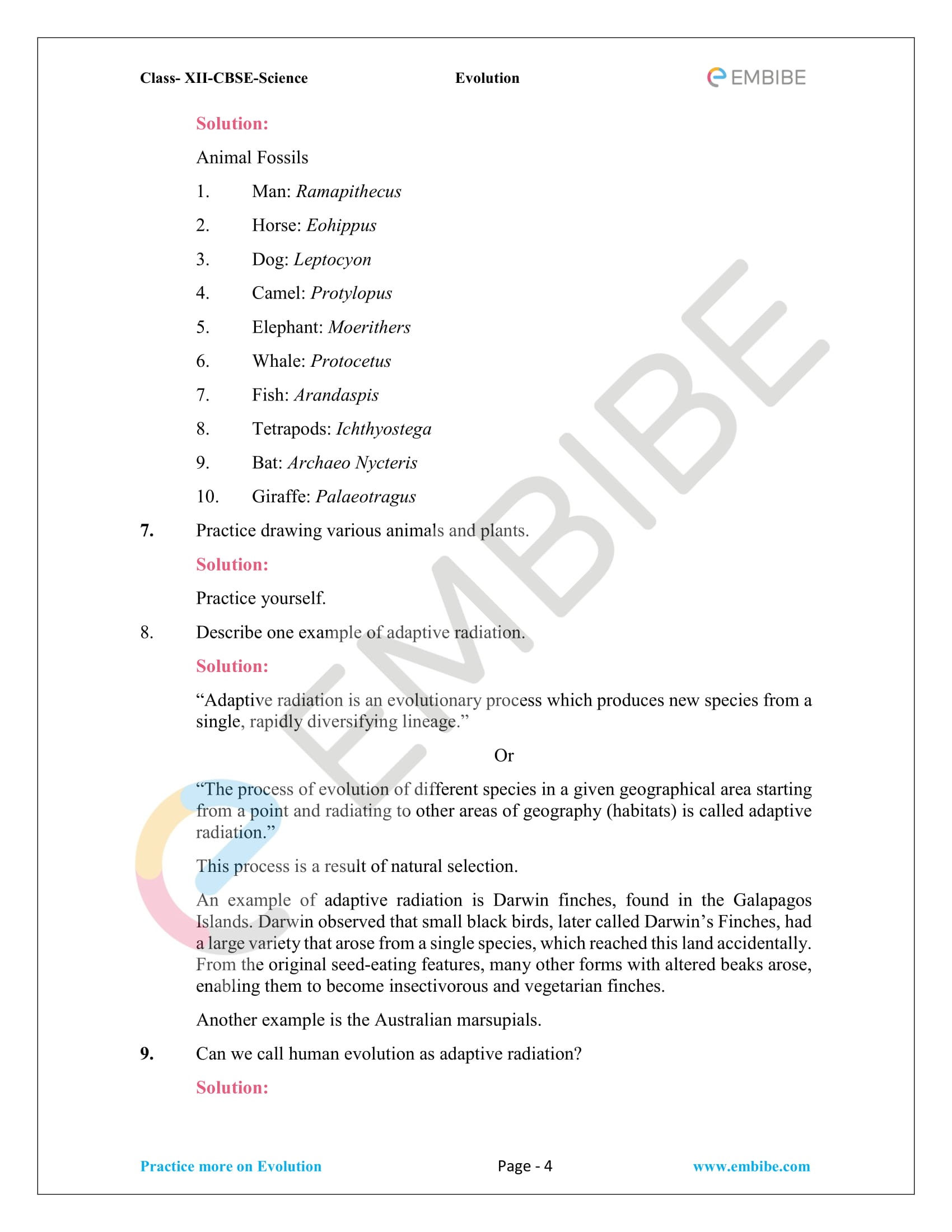 NCERT Solutions for Class 12 Biology Chapter 7 - Evolution - 4