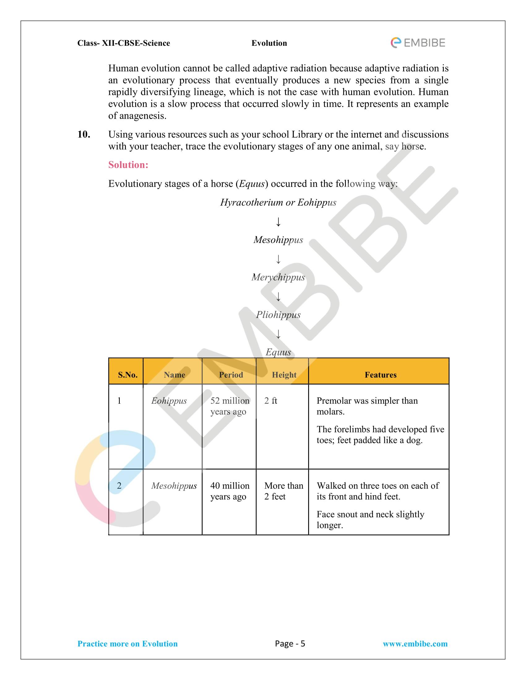 NCERT Solutions for Class 12 Biology Chapter 7 - Evolution - 5