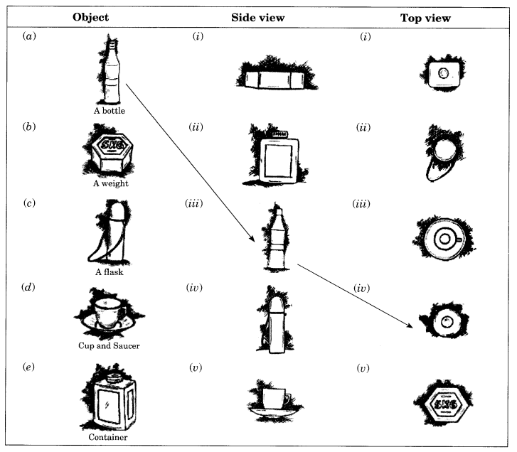 ncert solutions for class 8 maths chapter 10 exercises