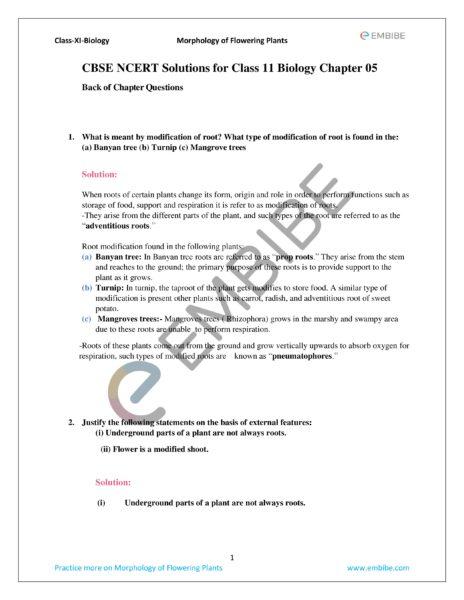 ncert solution for class 11 biology chapter 5