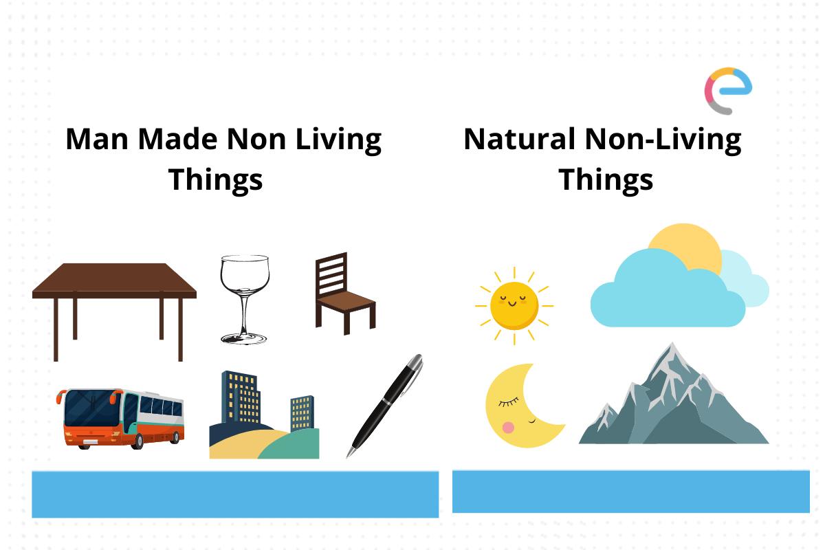 Non Living Things Chart
