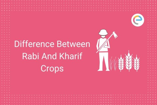 Difference Between Rabi And Kharif Crops