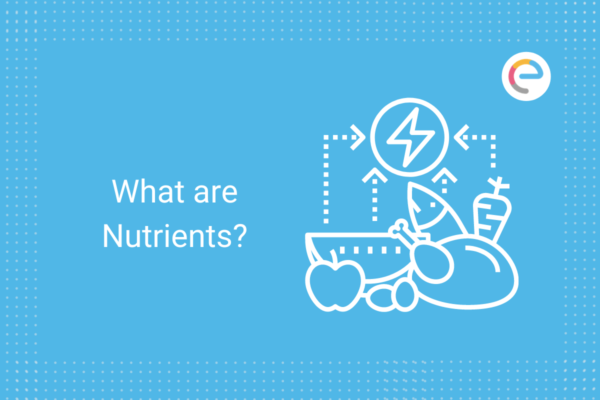 What are Nutrients? Check