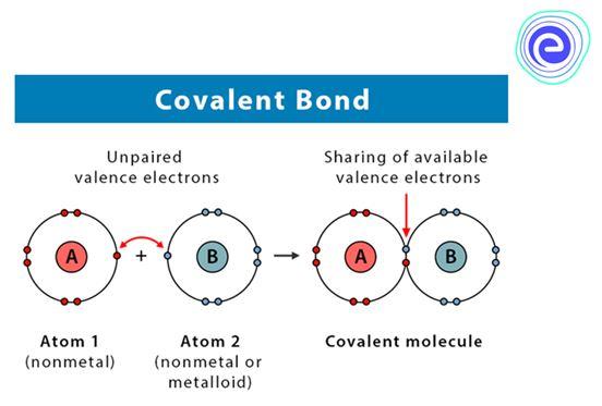 2.Covalent Bond